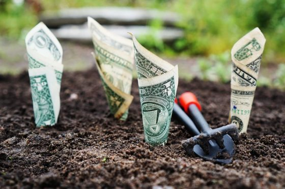 Fast Small Business Loans Online: One Park Financial Review 2019