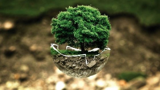 4 Smart Ways Environment-Conscious Companies Are Setting Great Examples