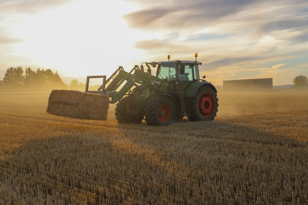 Modern-Day Agriculture and 6 Big Potential Health Risks