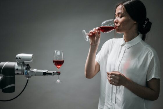 The Application of Cobots In the Technologized World