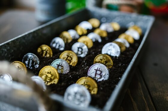 Easy Cryptocurrency Guide 101: From PKT Cash to Bitcoin