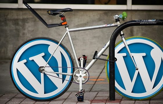 20 Easy Actionable Steps for WordPress Blogs and Websites